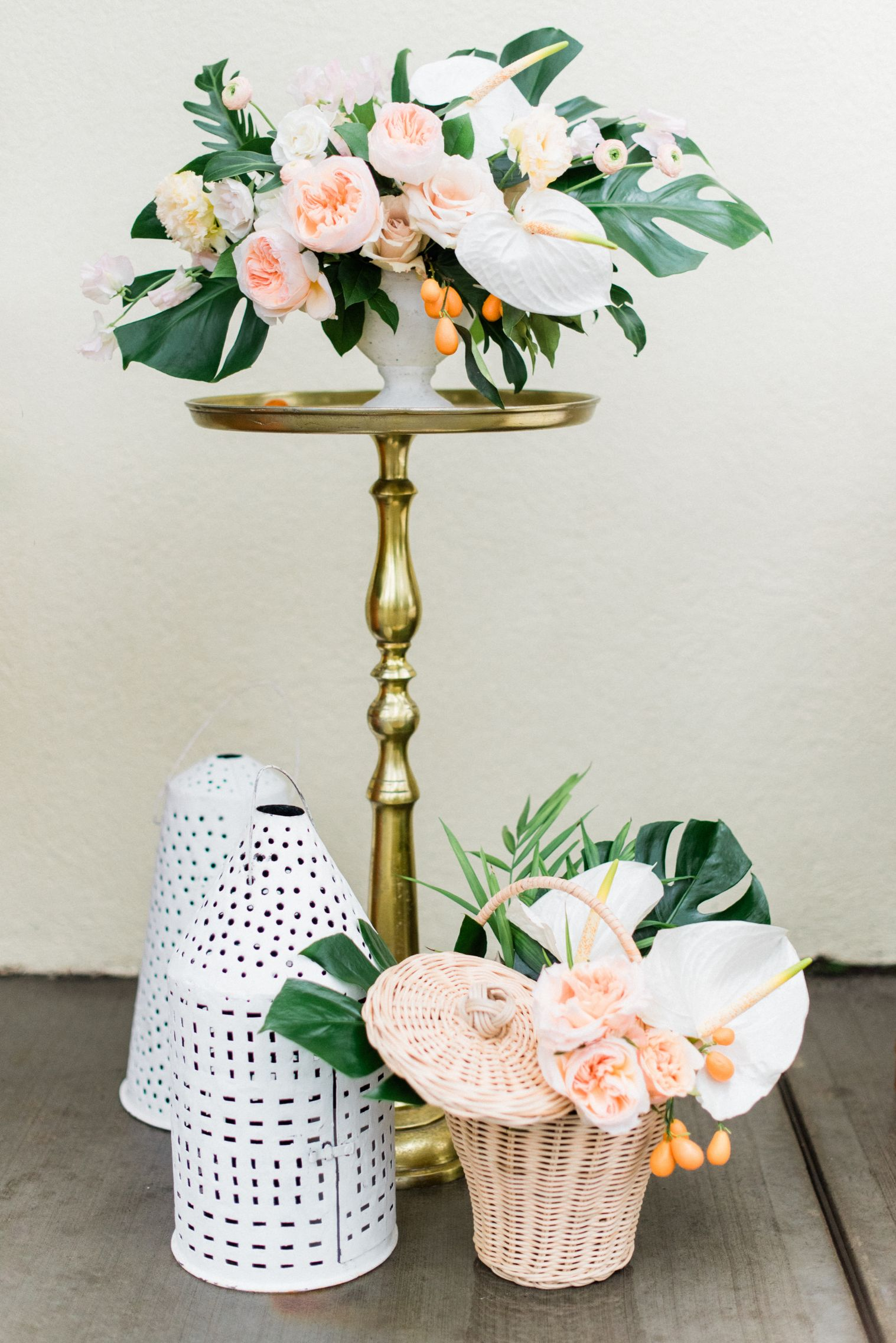 roger-williams-park-botanical-tropical-peach-daylynn-designs10.jpg