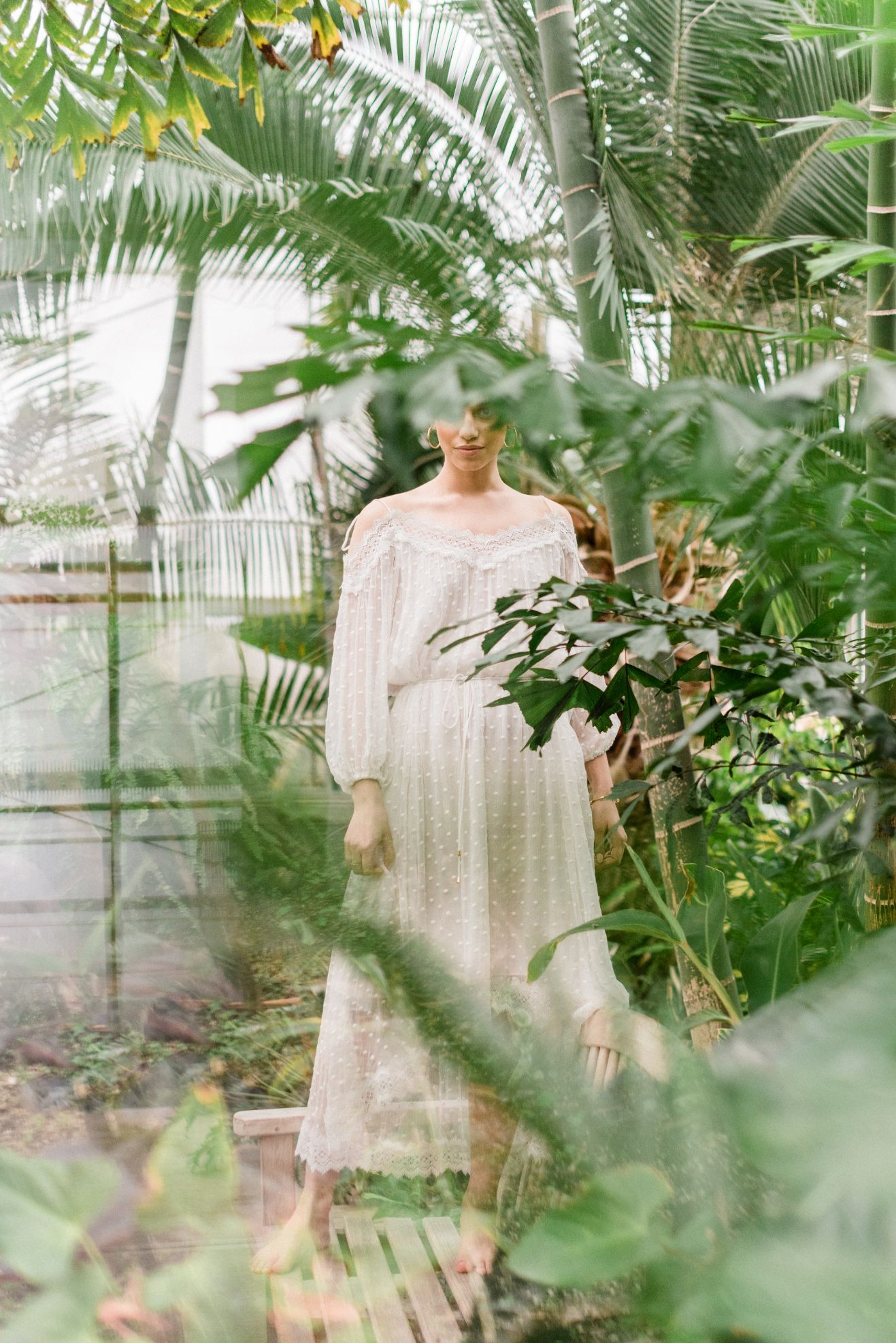 roger-williams-park-botanical-tropical-peach-daylynn-designs50.jpg