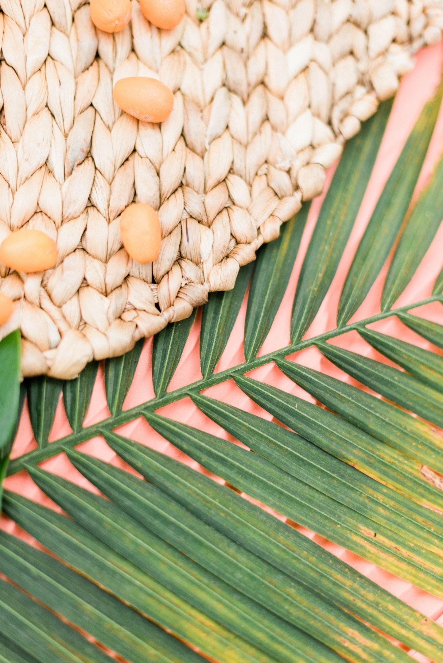 roger-williams-park-botanical-tropical-peach-daylynn-designs67.jpg