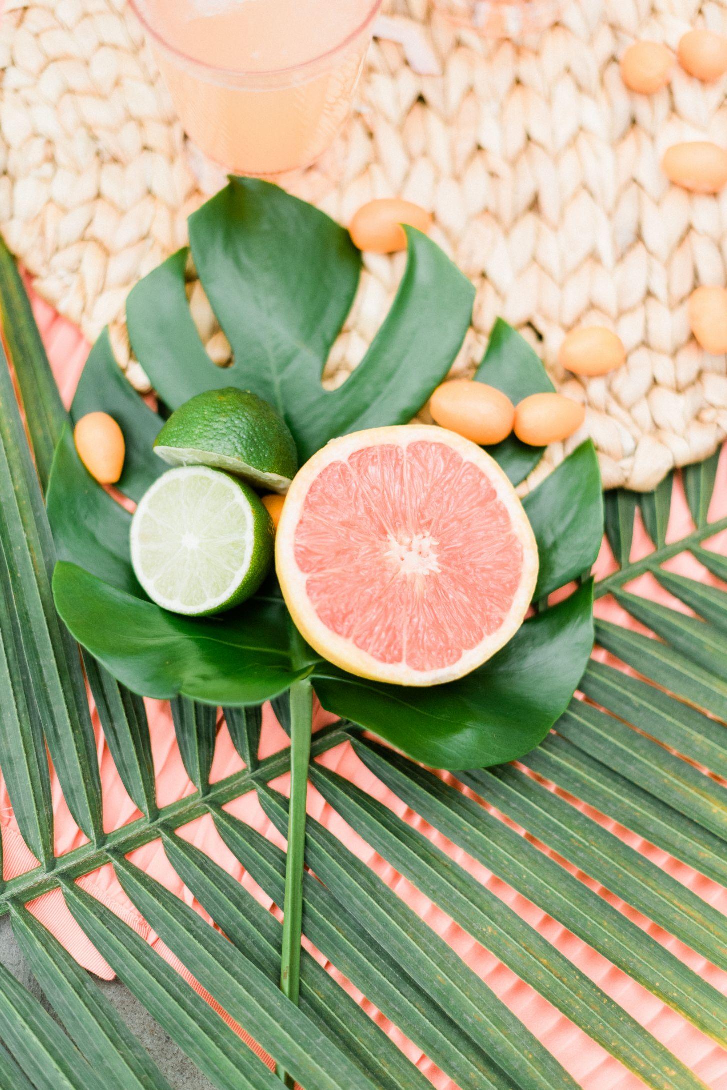 roger-williams-park-botanical-tropical-peach-daylynn-designs66.jpg