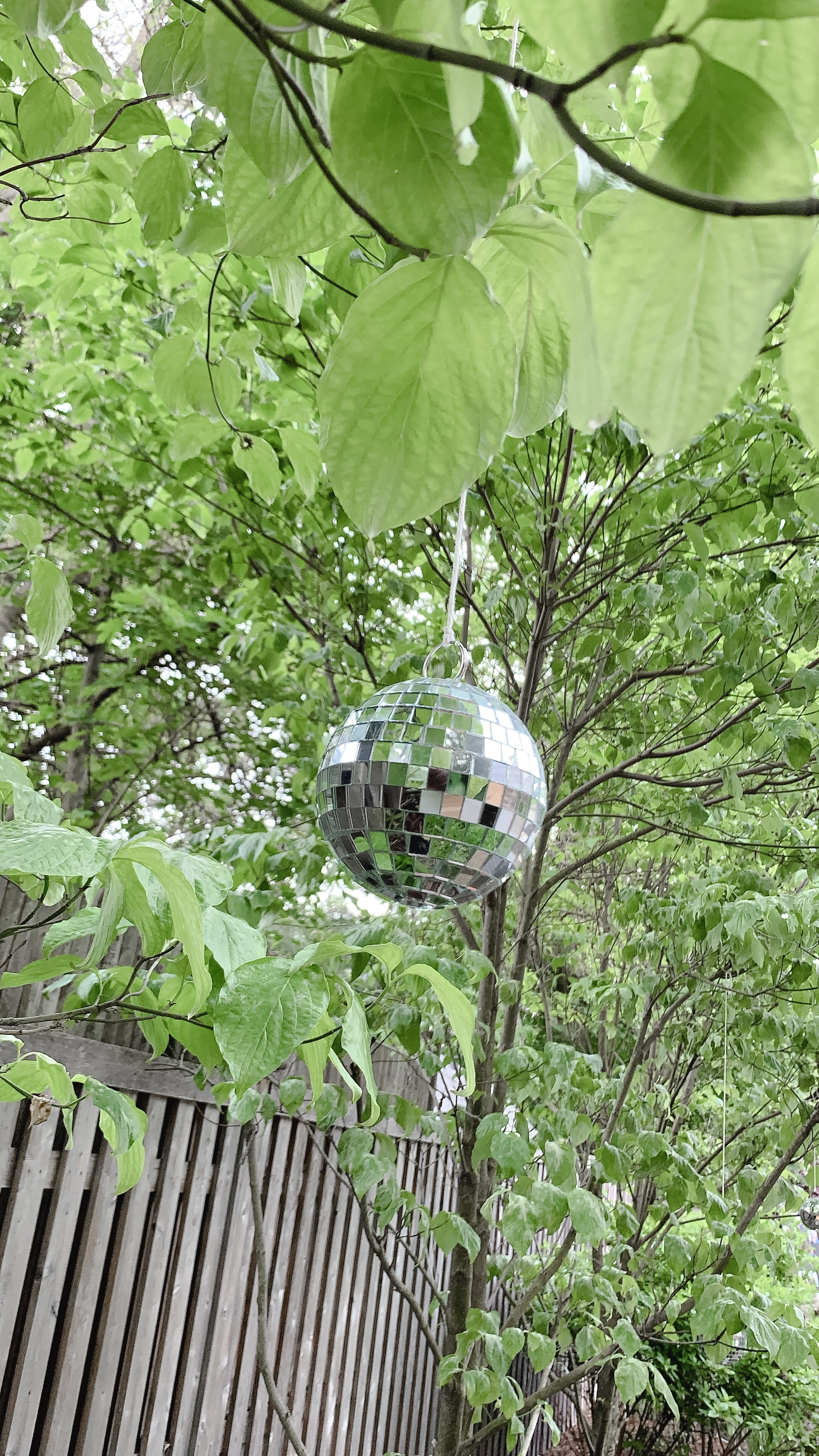 70s-themed-birthday-party-newton-ma-disco-ball-decor-daylynn-designs