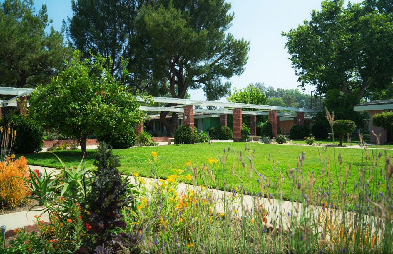 garden-image-2.jpg