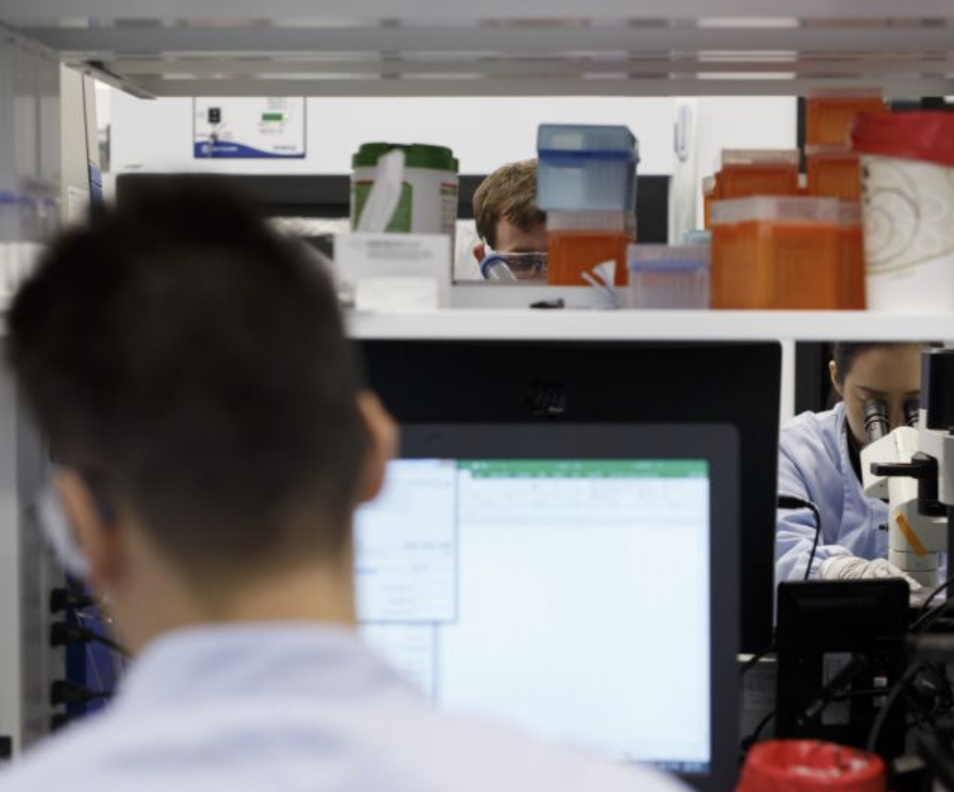 Healthcare labs are increasingly using AI tools to develop treatments and in medical research. Photo: Cole Burston/Bloomberg via Getty Images