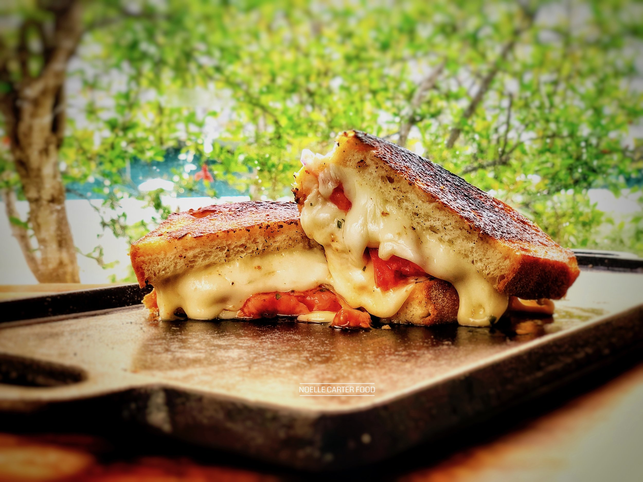 Grilled cheese with marinated tomatoes. (Noelle Carter)