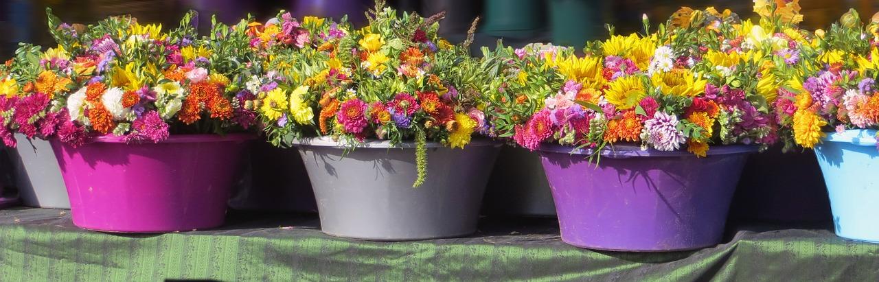 flowers-508204_1280.jpg