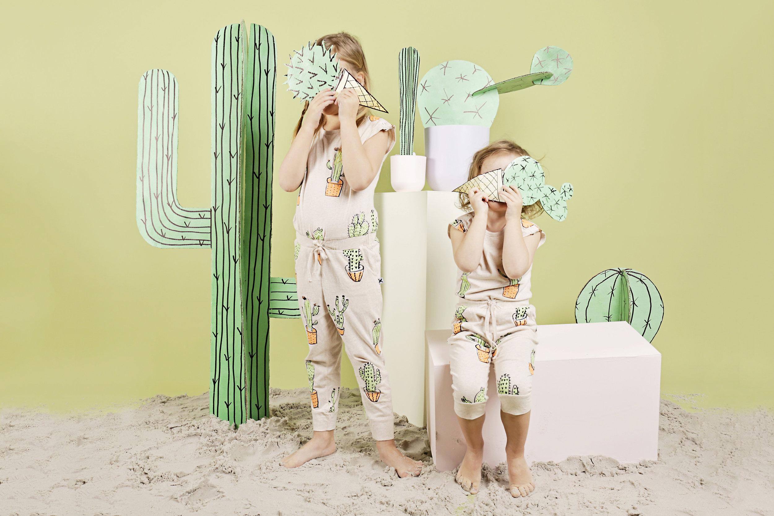 Cactus Sands