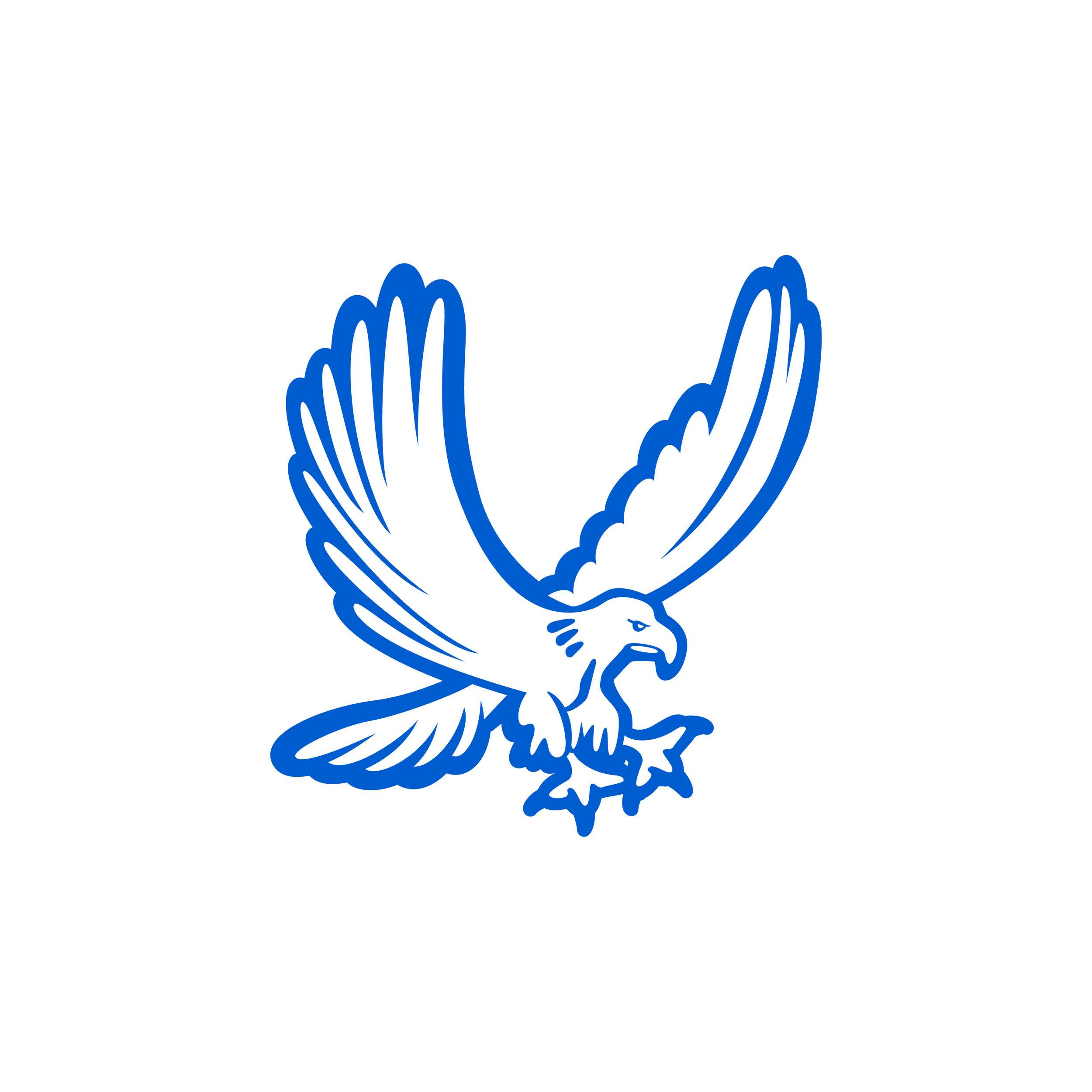 The Cooper Eagle
