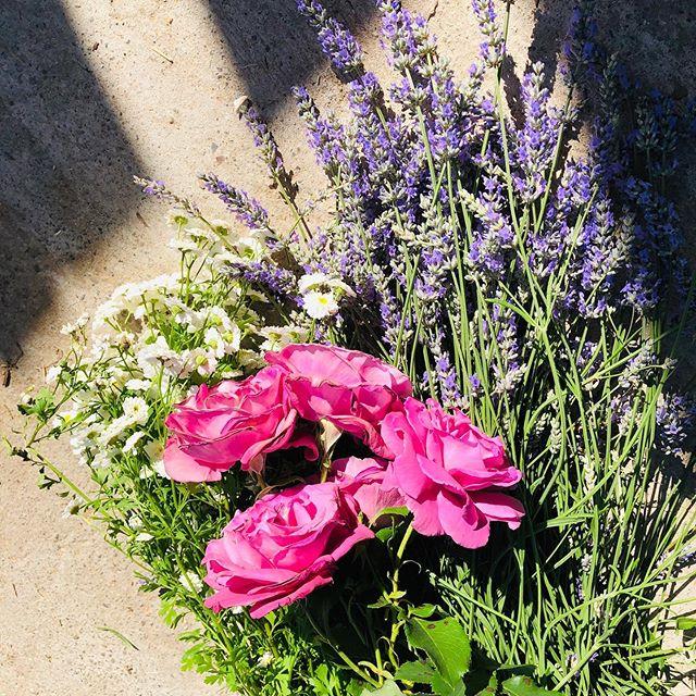 Garden Bounty🌸💕🌸#garden #flowers #shamanism #spiritualawakening #spiritweaversgathering #home #inspiration #beautyway