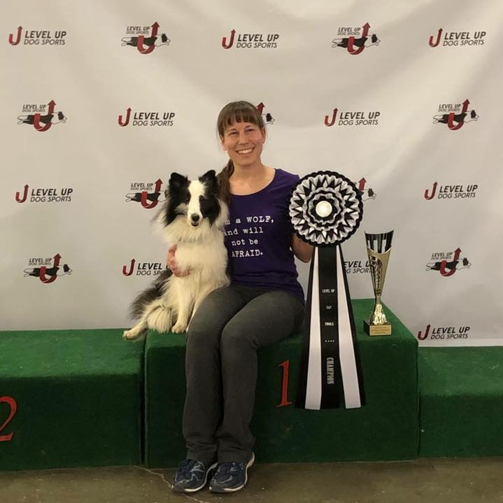 """Dr. Alyssa Fenton, DVM - Agility Instructor - Alyssa is a veterinarian by day, and breeds and shows her Shetland Sheepdogs. she competes in conformation, nosework, obedience and herding. She has competed at multiple national events with her current and past agility dogs and was excited to place in two rounds at the AKC FCI world team tryout in 2018. her current dogs are:MACH5 Chivalyn's Song of Ice and Fire """"Arya"""" MXC MJC MXF TQX T2B3 CGCAChivalyn Clearsky Mischief Managed """"kristoff"""" AX AXJ XFChivalyn Clearsky Defying Gravity """"elphaba"""" NA NAJ MXP2 MJP2Ch Chivalyn Songweaver """"stefan"""" AX MXJ CGC"""