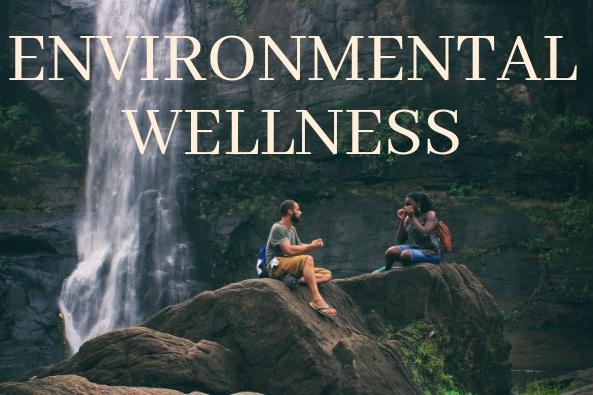 ENVIRONMENTAL+WELLNESS.jpg