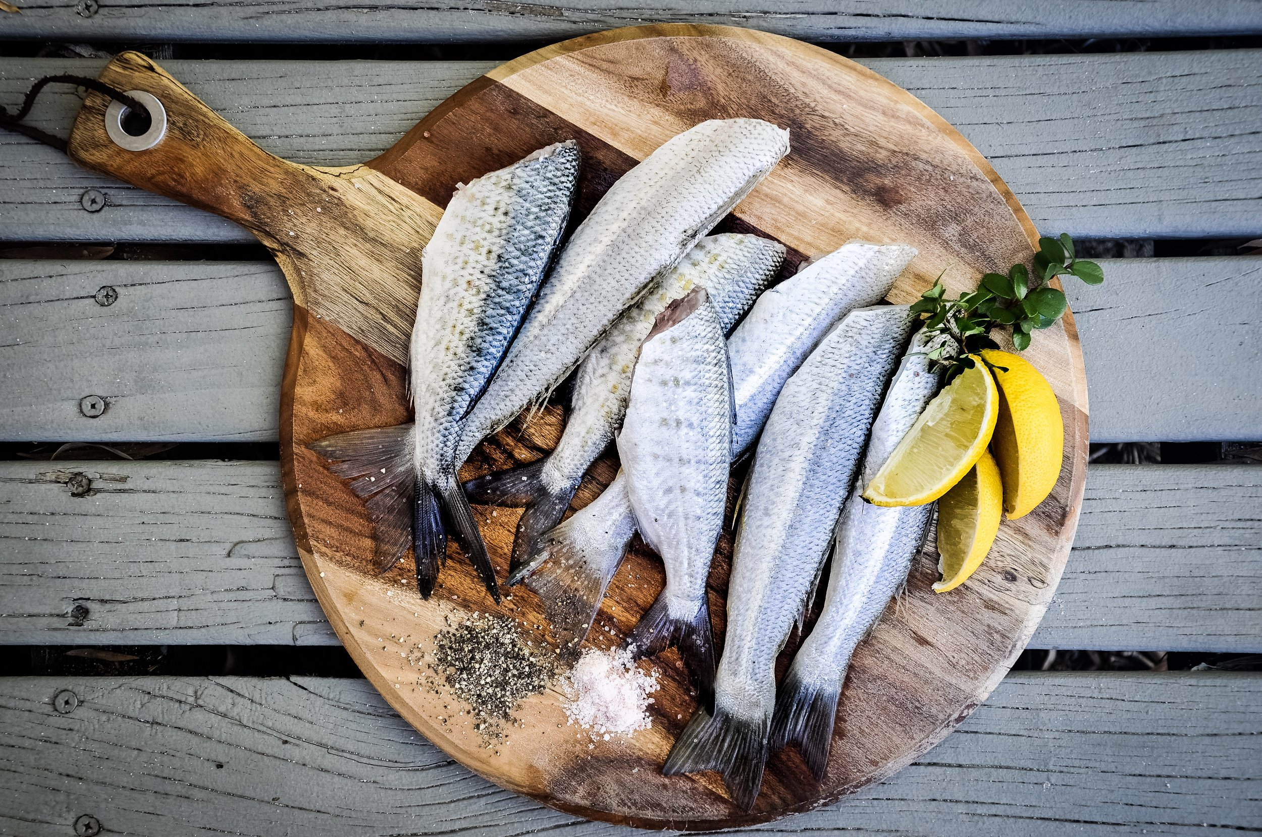Fish are a great source of Omega 3's