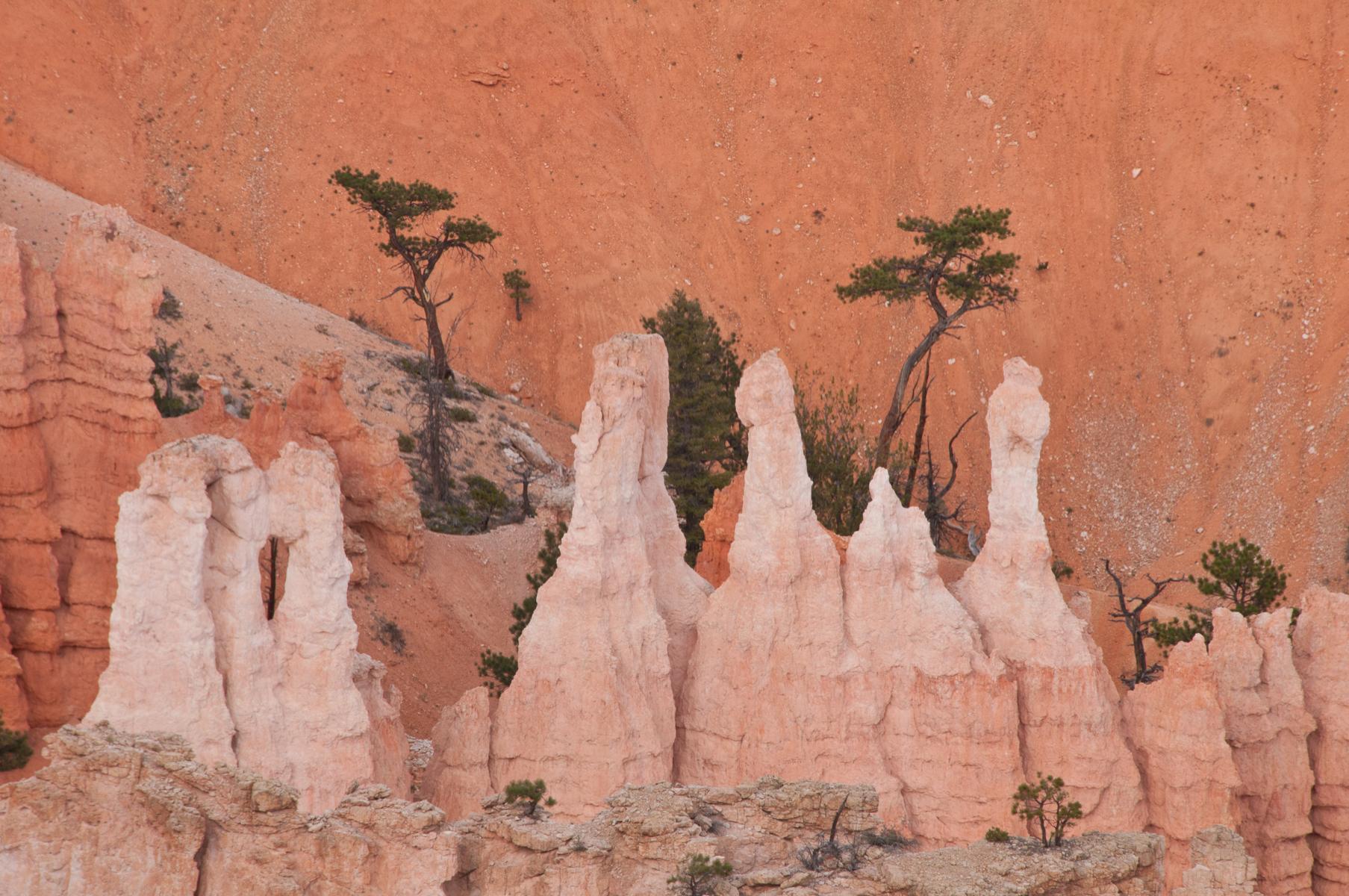 Bryce Canyon 2010-0219.jpg