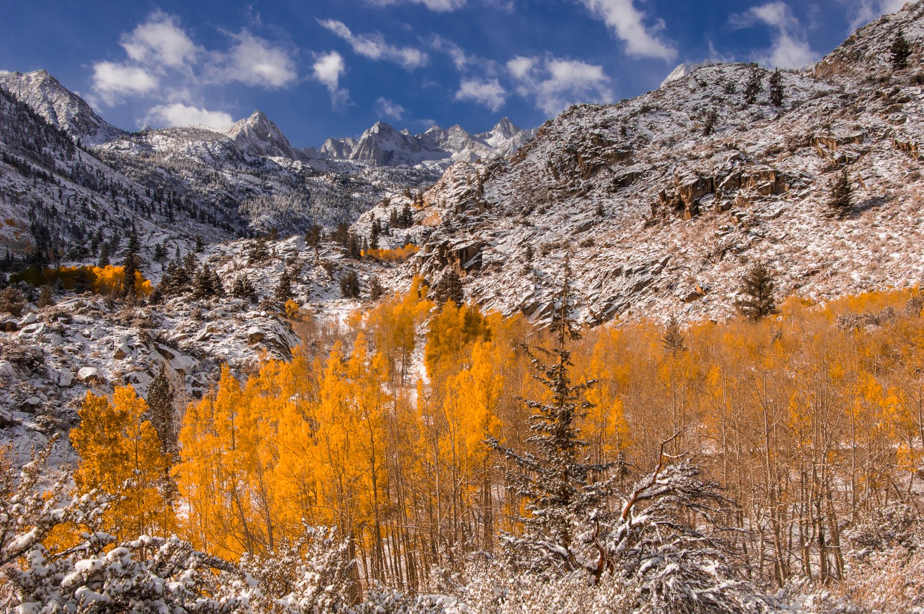 Eastern Sierra 2008-0181.jpg