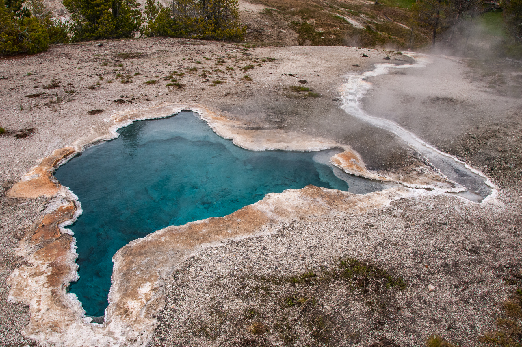 Yellowstone 2010-0949.jpg