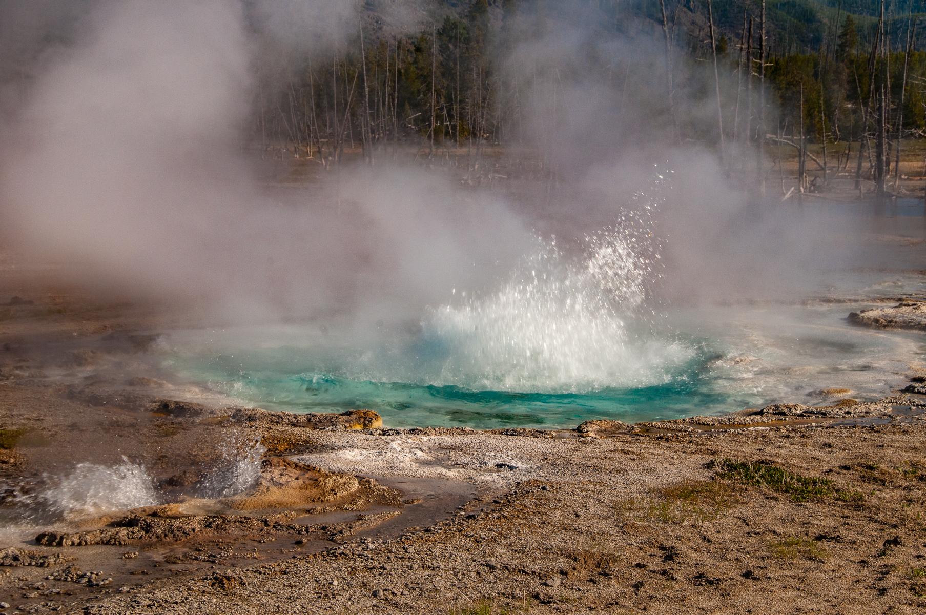 Yellowstone 2010-1685.jpg