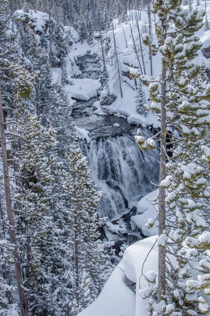 Yellowstone 2007-0242.jpg