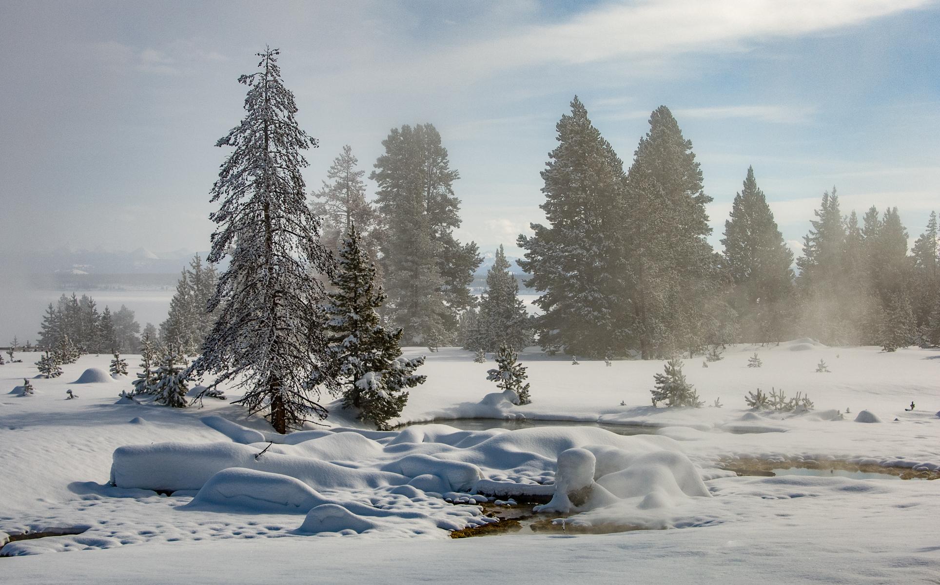 Yellowstone 2007-0268.jpg
