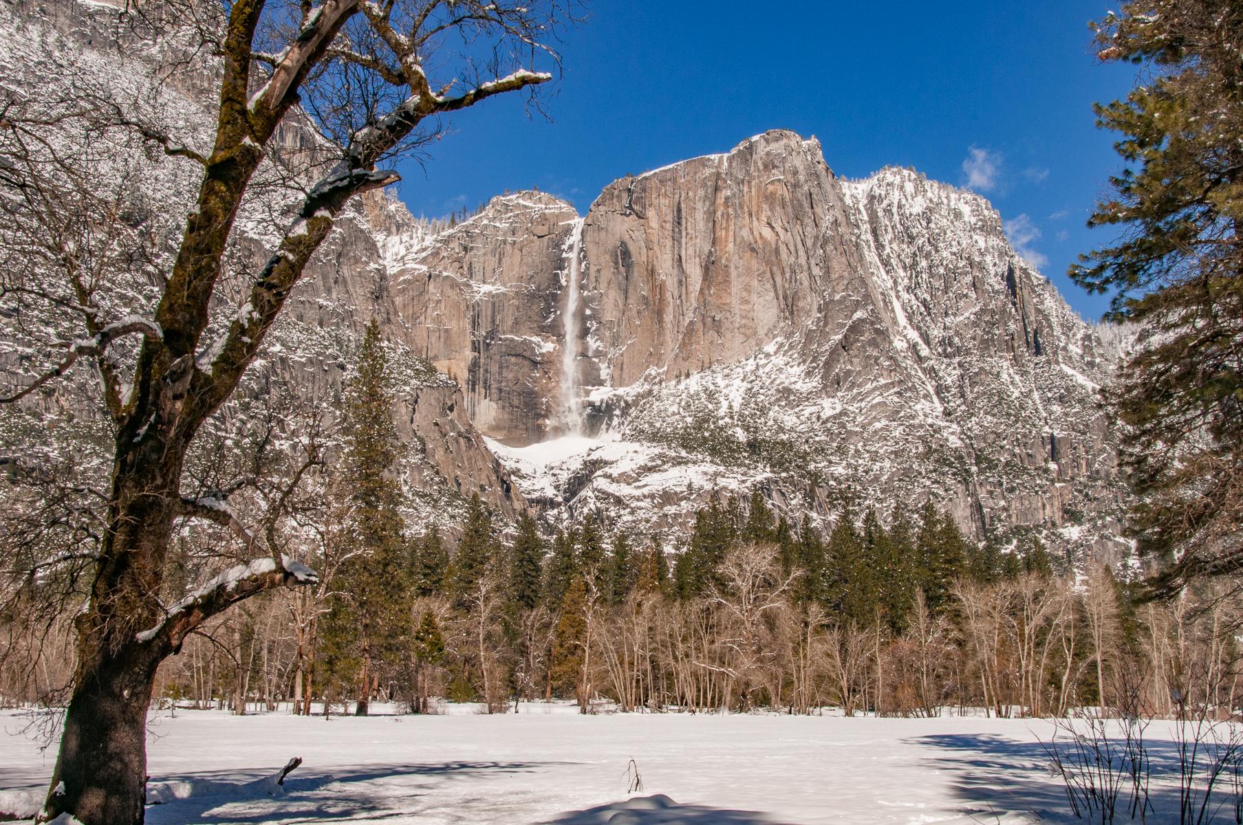 Yosemite 2011-00171.jpg