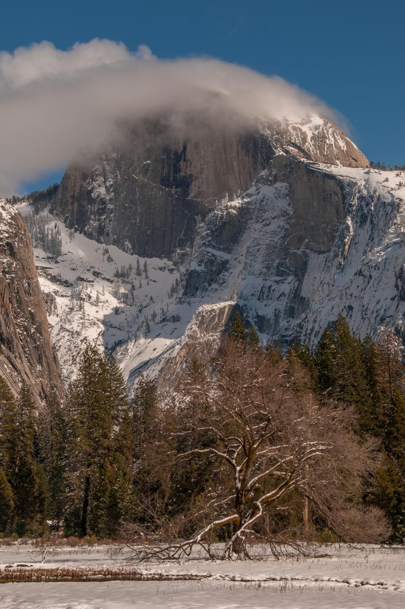 Yosemite 2011-00501.jpg