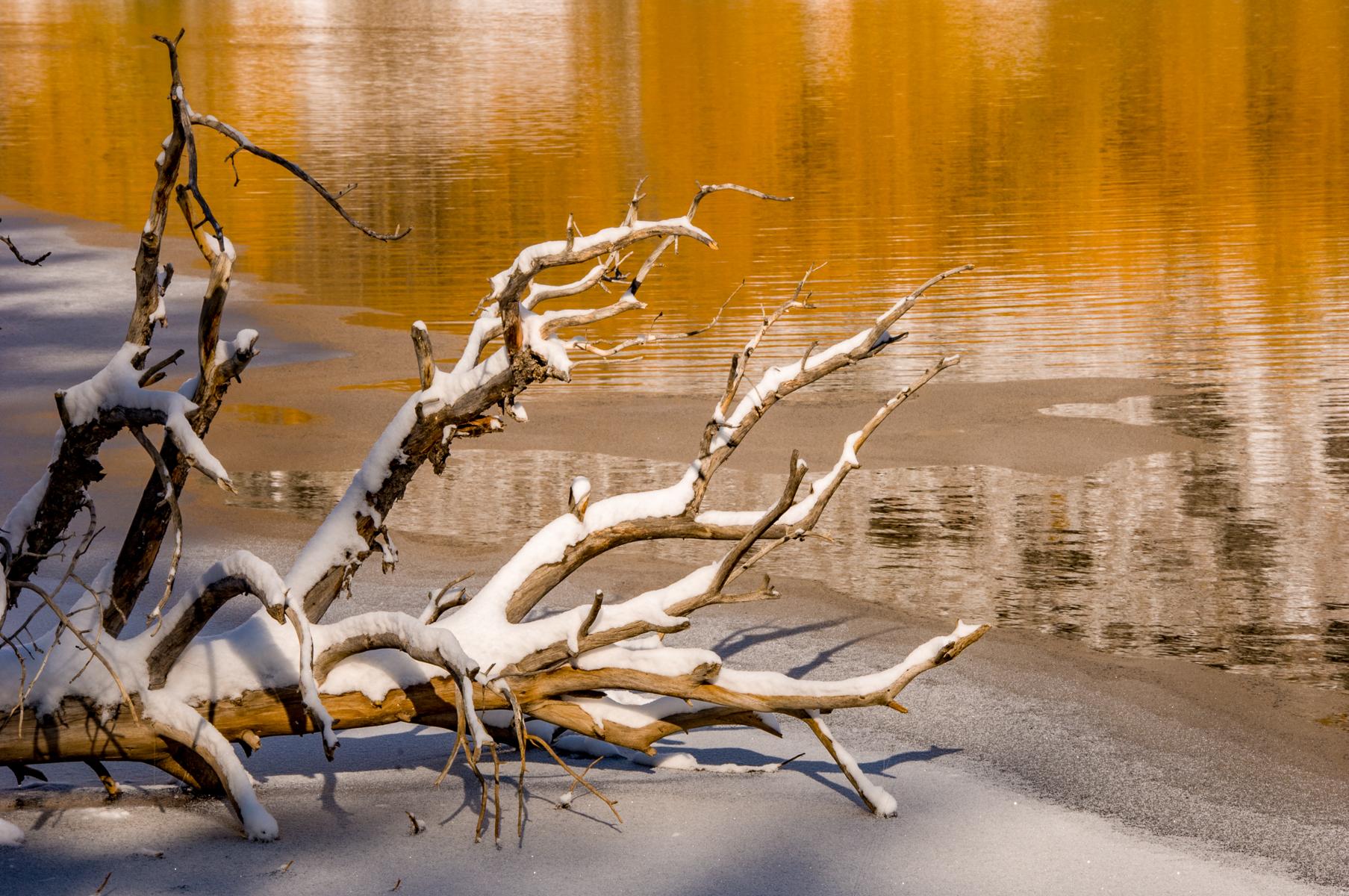 Eastern Sierra 2008-0174.jpg