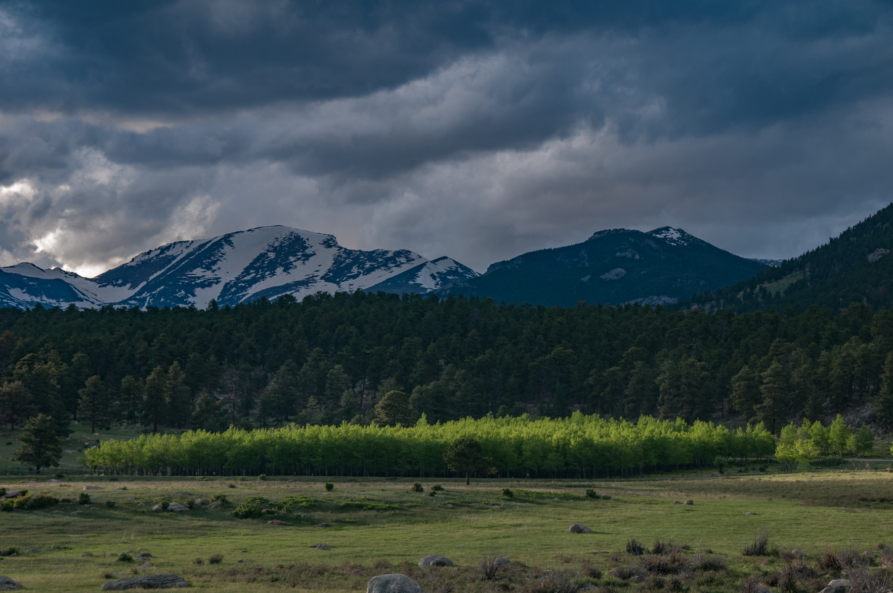 Rocky Mountain Park 2010-1884.jpg
