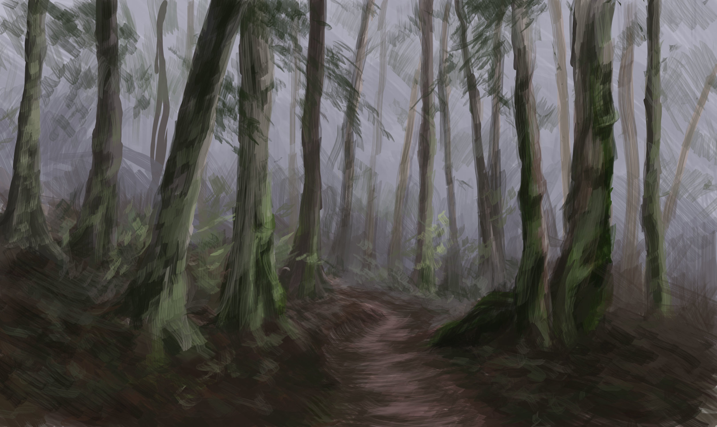 Dreary Forest Environment