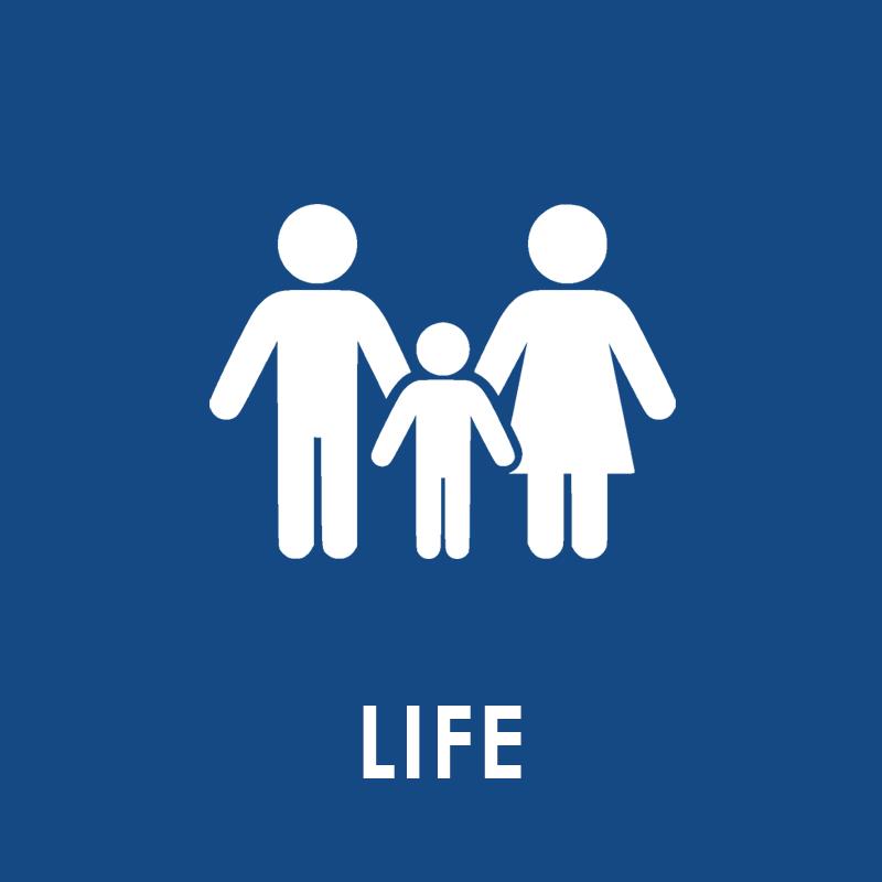 Life Button 2.jpg