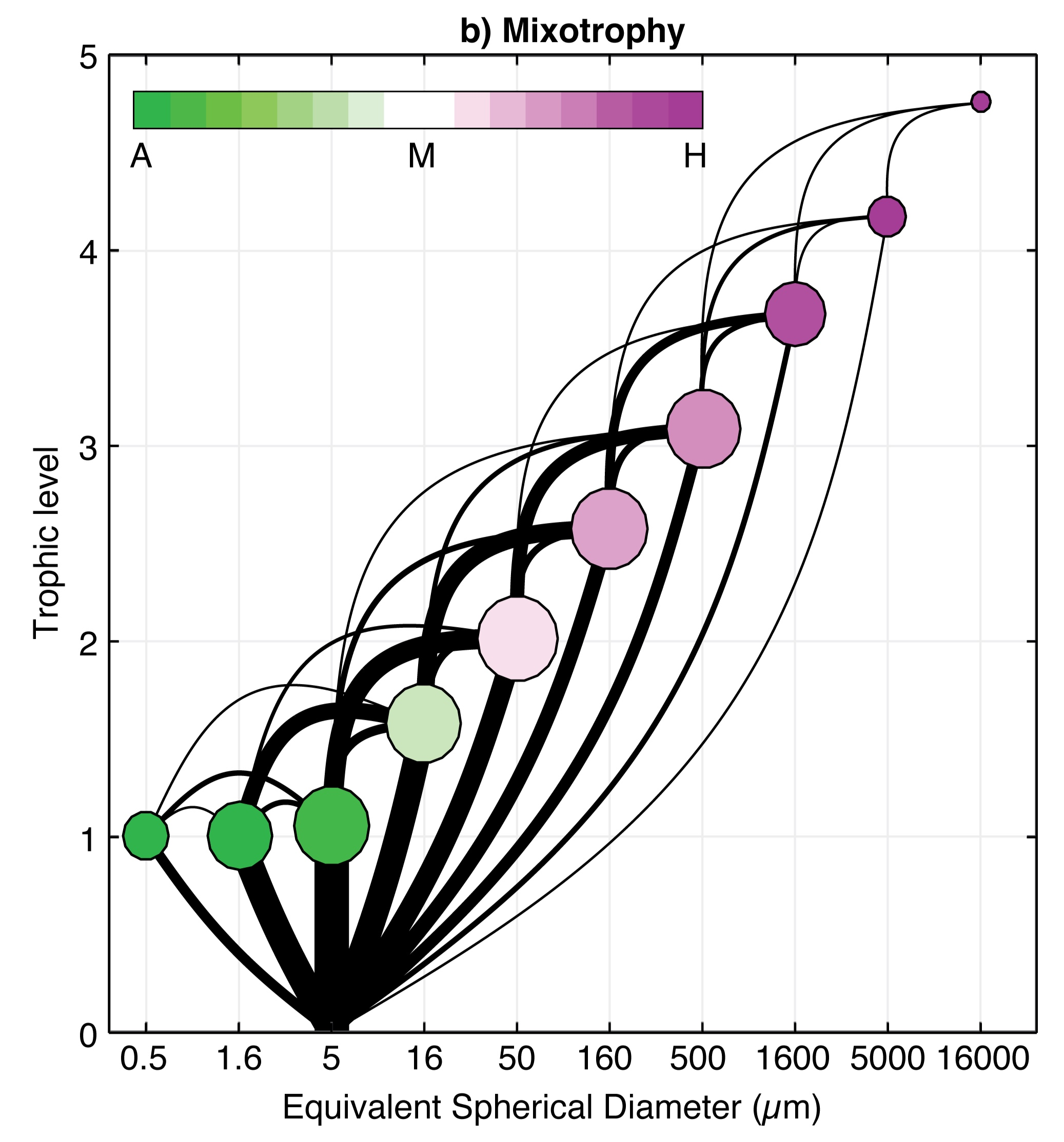 Emergent community structure in a global model with no distinction between autotrophs and heterotrophs.