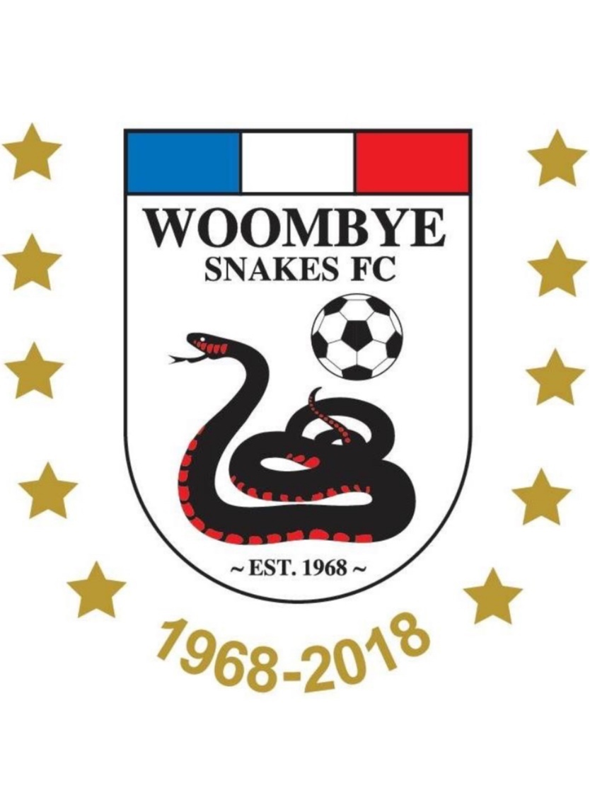 Palmwoods+Physiotherapy+Woombye+Snakes+FC+.jpg