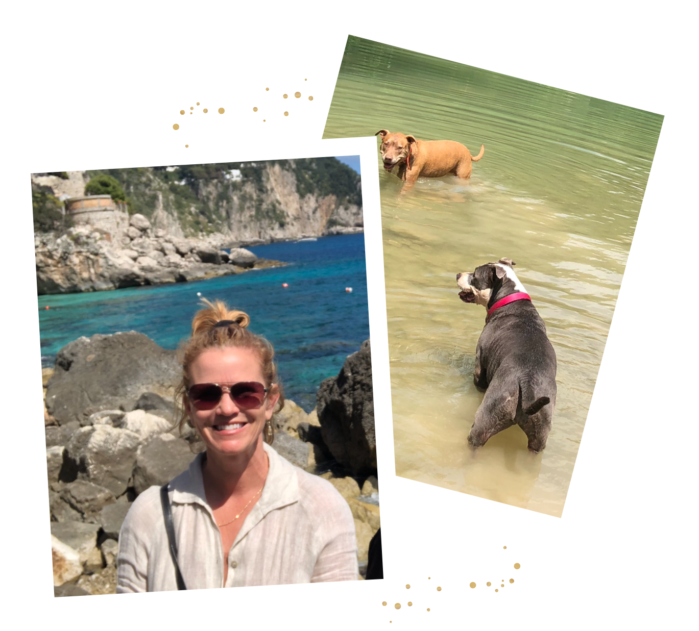 Ciao! - I'm Susan (or Susana here in Italy), an adventurous expat from California who always had a love for Italy. After 30 years of dreaming, I quit my corporate job and workaholic lifestyle to move to Southern Italy and start a new life. With my two dogs, Mack and Sweetie Pie, I moved to a traditional, Southern Italian village in the Campania region.