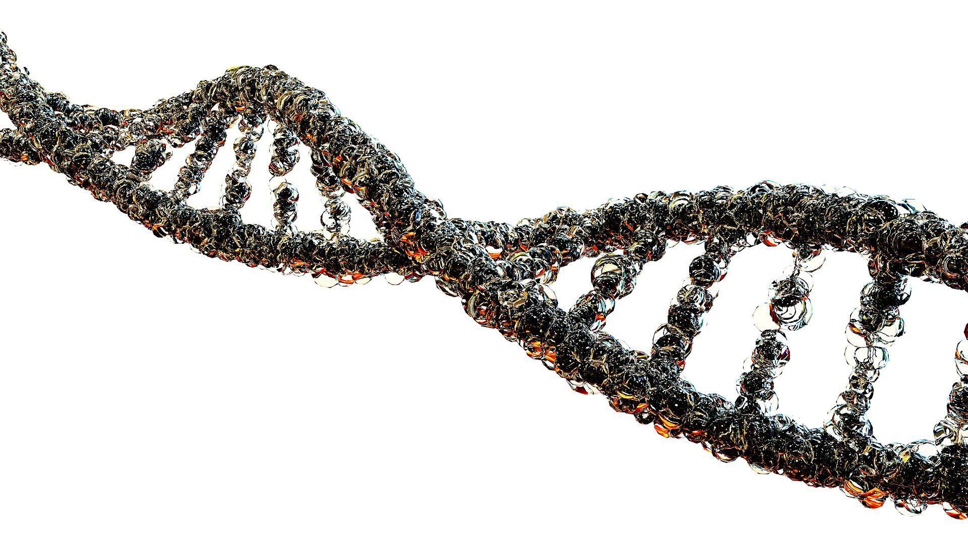 Sab°as quÇ - ADN.jpg