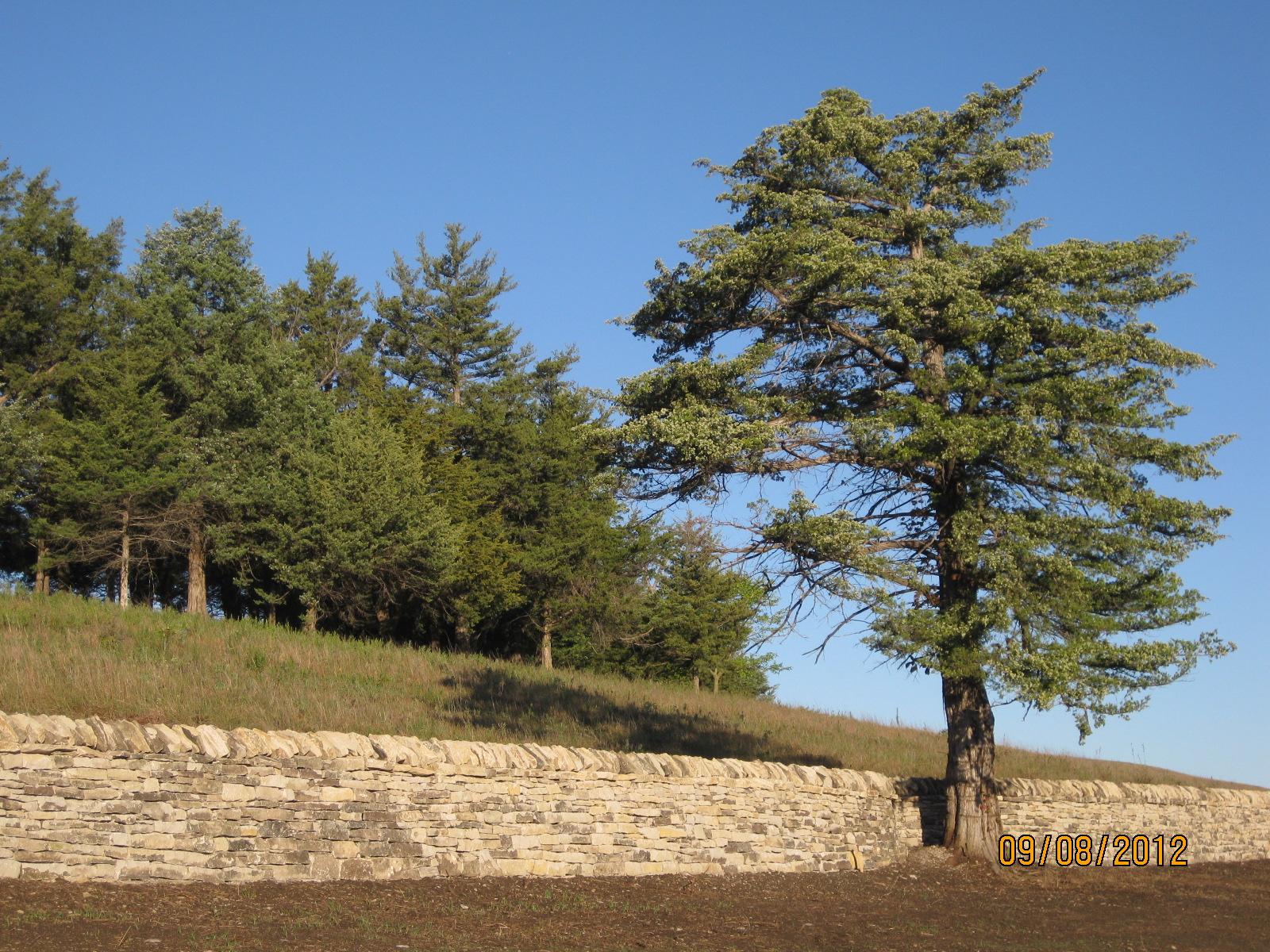 Tallgrass Prairie National Preserve, 2012 -