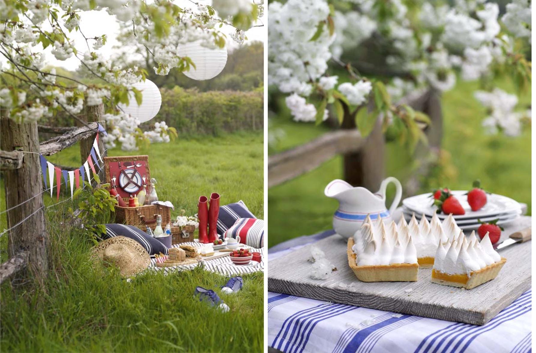 picnic 1 web .jpg