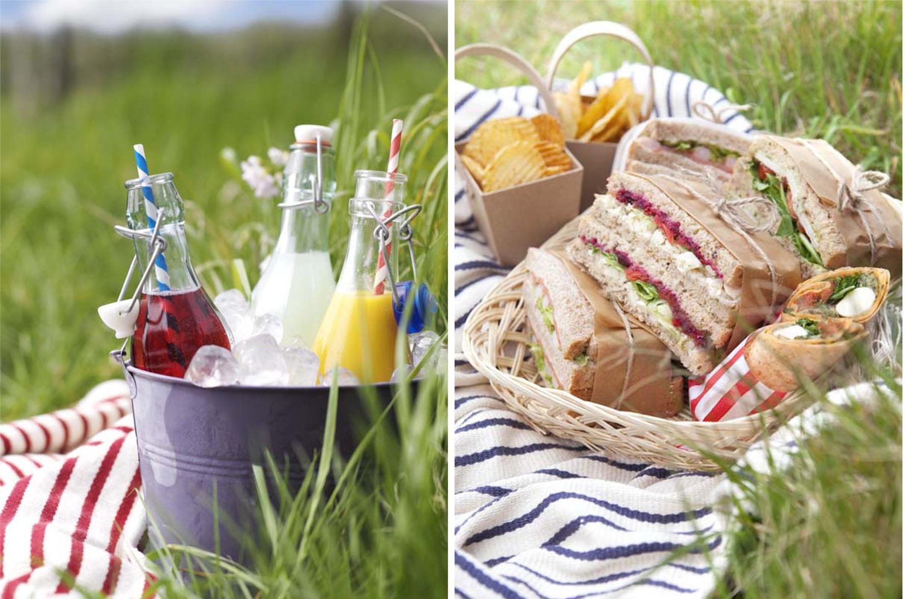 picnic 4 web .jpg