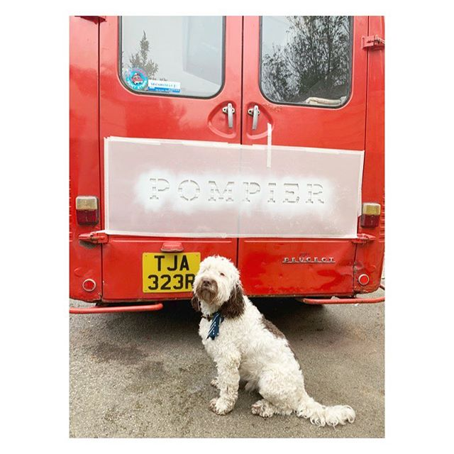 It's all hands on deck with the van at the moment....including Otter the dog 🐶🚒👌🏼 . . #pompierbarbeque #pompier #foodtruck #otterthedog #barbeque #cornwall