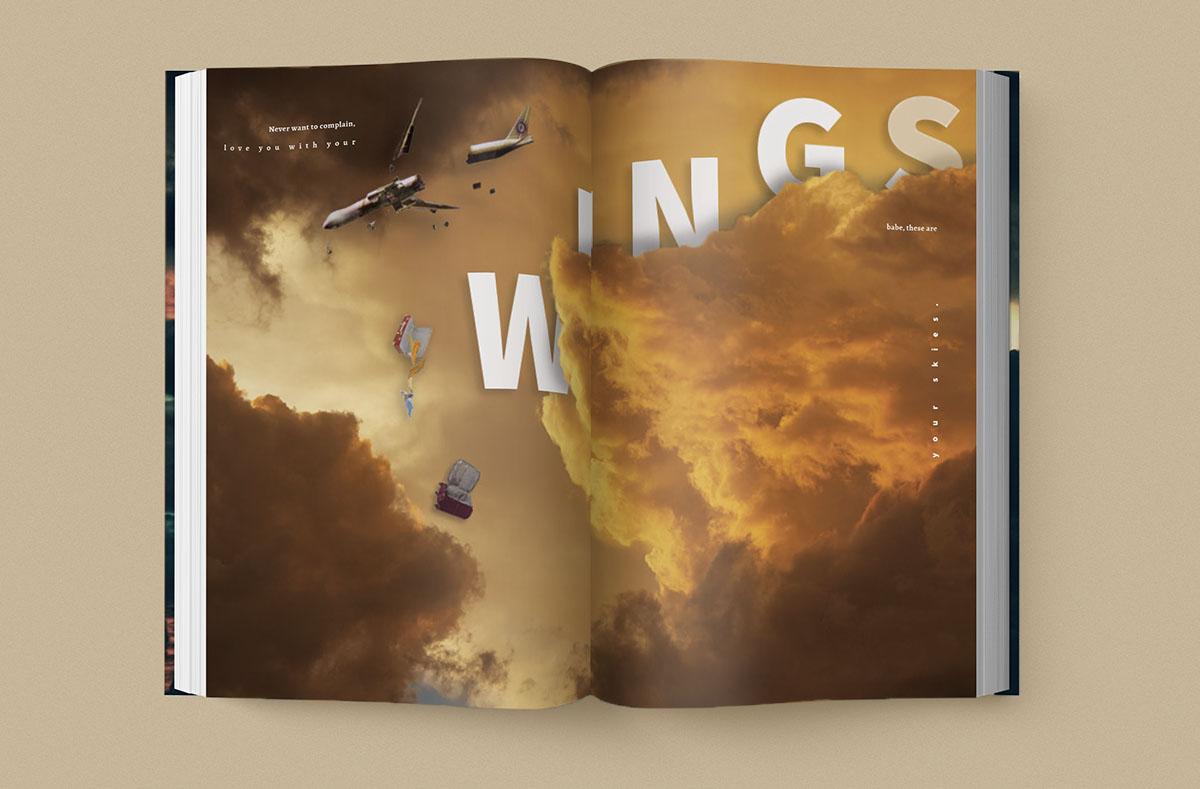wingscolor.jpg
