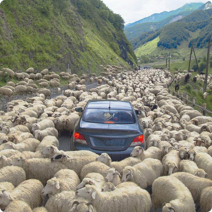 Figure-Out-Life's-Roadblocks.jpg