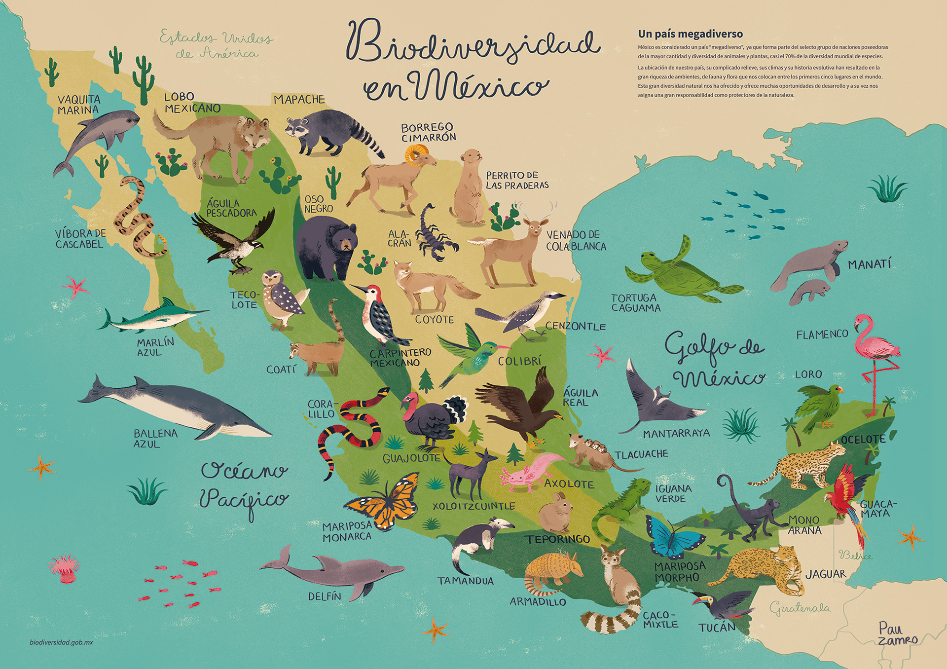 Wildlife of Mexico map. Educational illustration / Mapa de biodiversidad en México. Ilustración didáctica. 2019