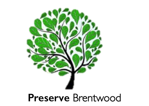 Legacy Tree and Black Name logo.png