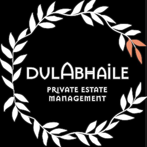 dul_Abhaile_Logo_White&Orange.png