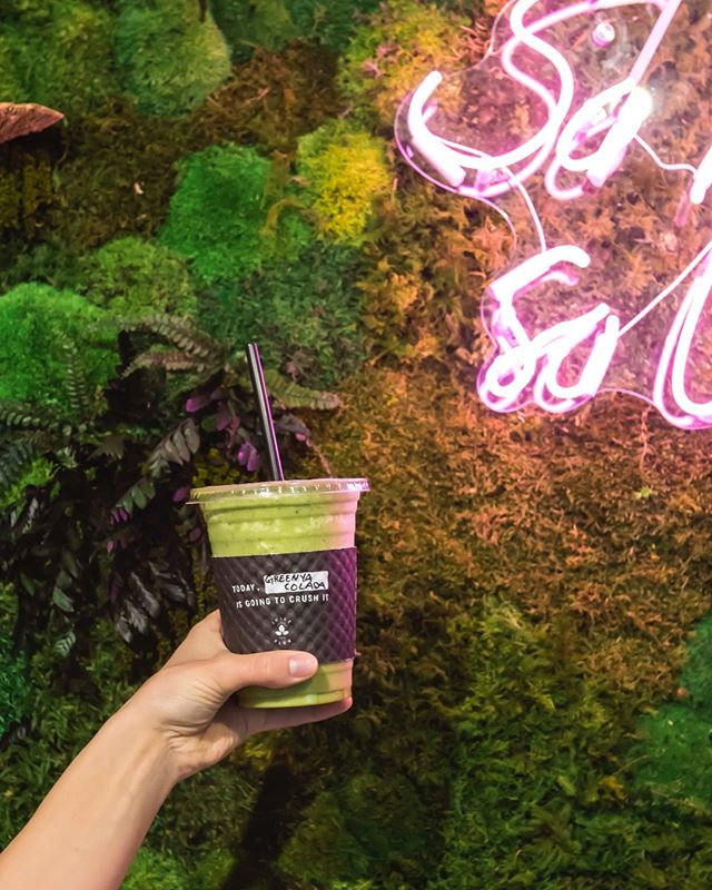 Greenya Colada has the perfect boost of protein, and the refreshing fruits and vegtables to make anybody's day 10X better😇   ▪️   ▪️   ▪️   #JUICEANDGLOW  #bellevuewa #downtownbellevue #bellevuefoodie #seattle #seattlewa #seattlewashington #seattlefoodie #seattlefood #seattleeats #bestfoodseattle #seaeats #eatsofsea #bellevueeats #bellevuefood #seattlehealth #grubinseattle #eatseattle #eatsseattle #seattleeatsguide #eatsofseattle #seattleyoga #seattle_igers #healthyjuices #freshjuice #pressedjuice #seattledrinks #seattlehealth #seattleyoga #seattleyogi