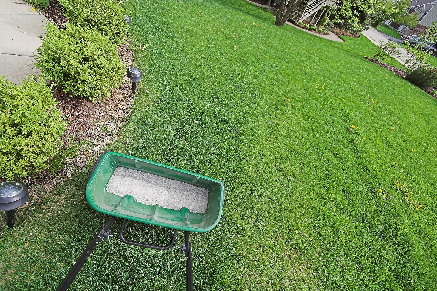 Organic lawn fertilizer in Peotone, IL