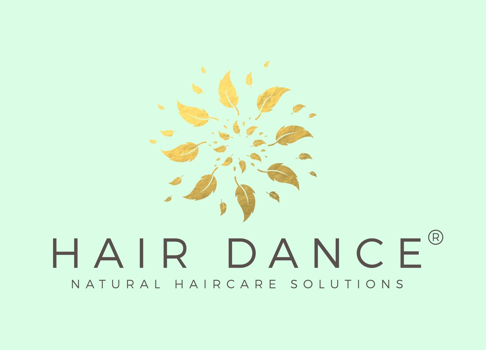 Hair Dance: Rebrand and Redesign Initiative - In collaboration with the owner, I led the rebranding and redesign initiative for my former client, an accessible and natural hair care range, in order to modernize the brand.
