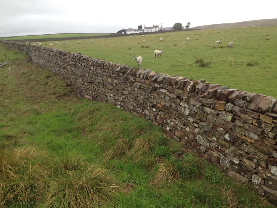 Field Boundary Dykes - Field boundary rebuilds & repairs