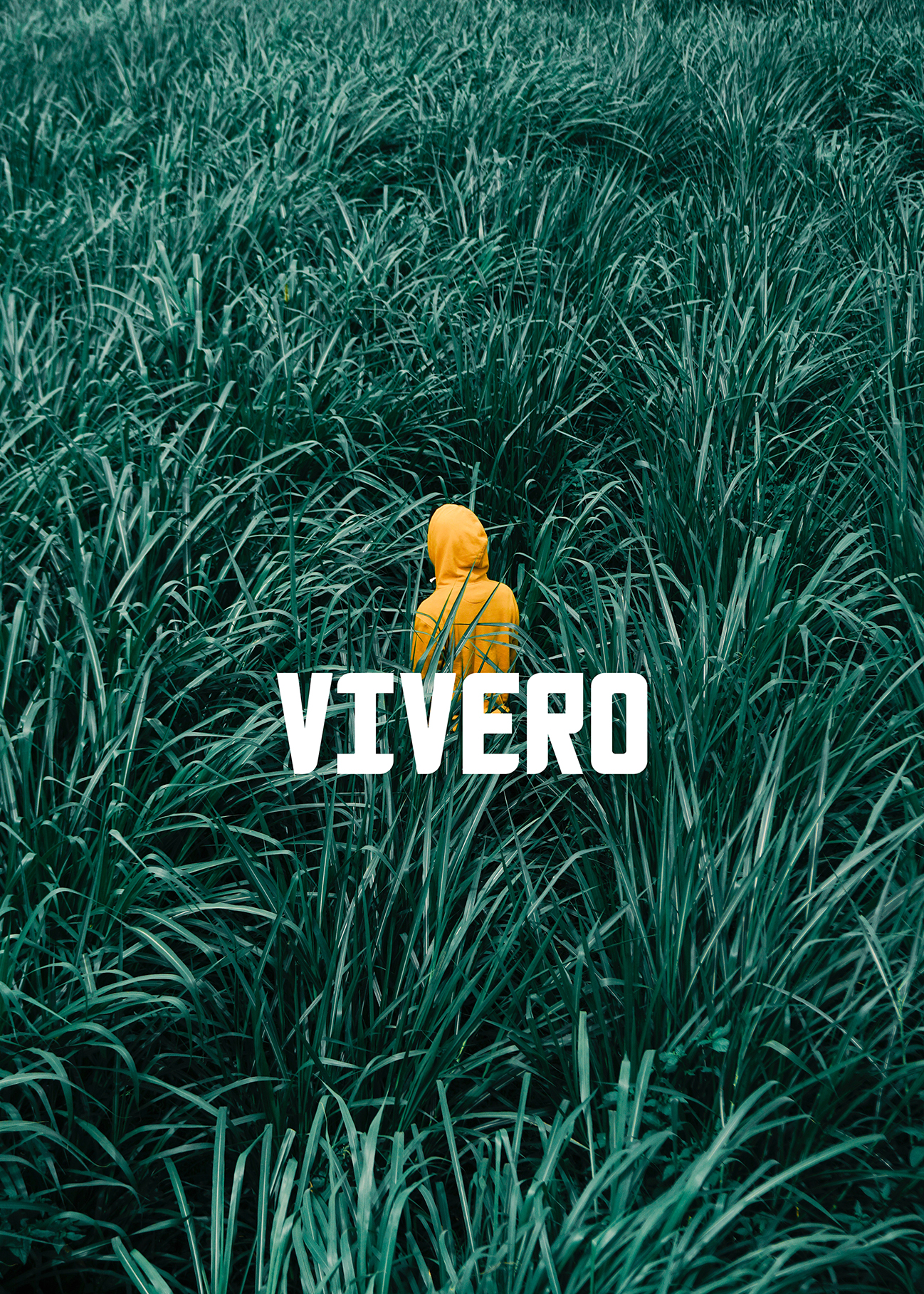 Vivero - Redefining strategic consulting through advanced cognitive technologies and ultimately AGI.Learn more ➝