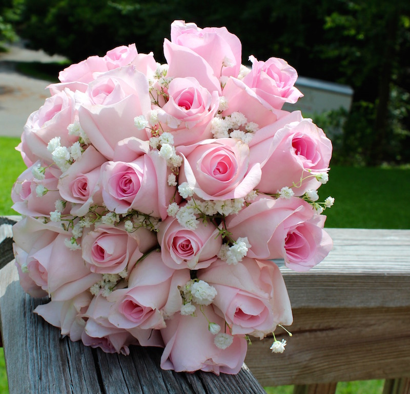 7815-Designers-Choice-Pink-Roses-with-Babys-Breath.jpg