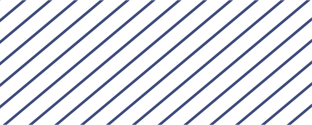 endsnowwashing-lines-dark-blue.png