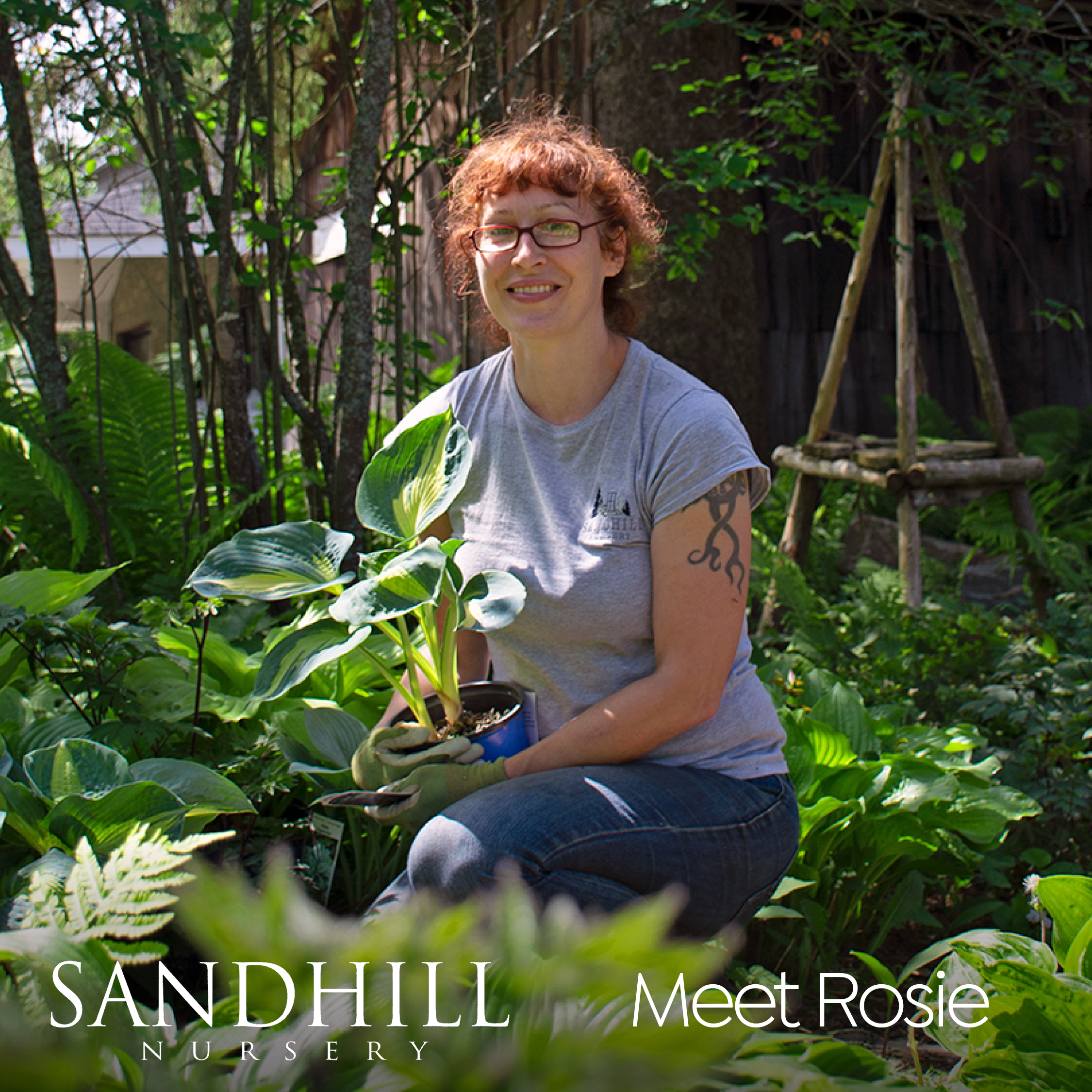 We believe that the staff at Sandhill make a trip to our nursery both unique and educational! Looking for creative solutions and design tips? Rosie's got great ideas on what plants pair well together to create a unique and eye-catching garden!