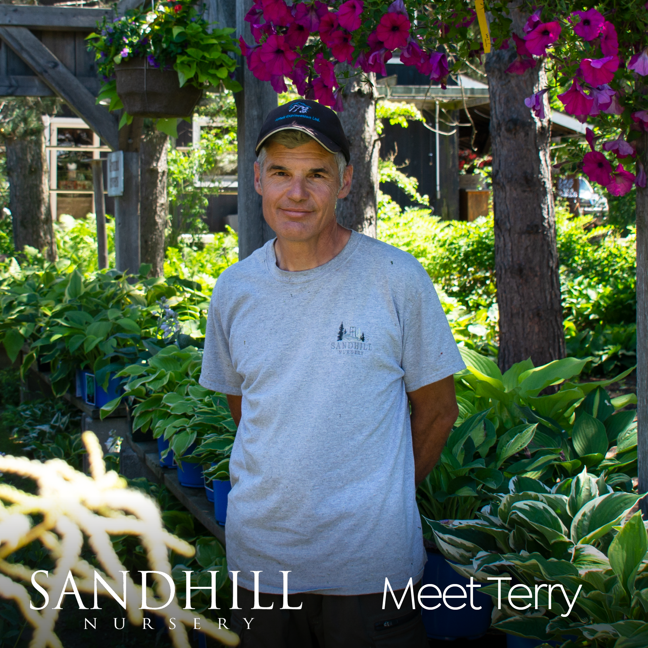 Another familiar and friendly Sandhill face! Terry is a firm believer that all Muskoka gardens can be impressive. Choose the right plants and they will flourish in our sometimes tricky soil and weather conditions. It just takes a little expertise. And Terry would know, he has 90 acres of his own green space!
