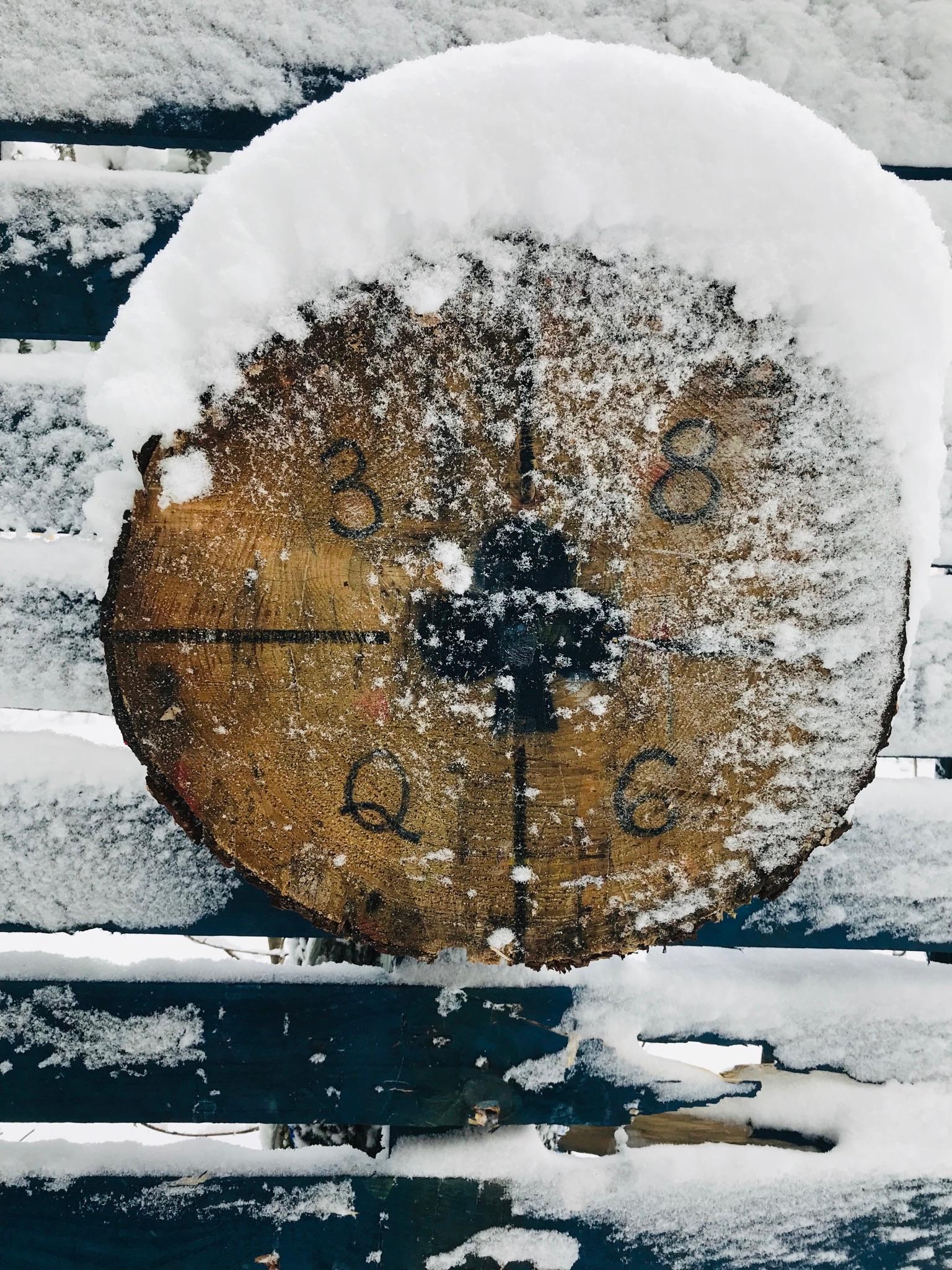 target in snow.JPG